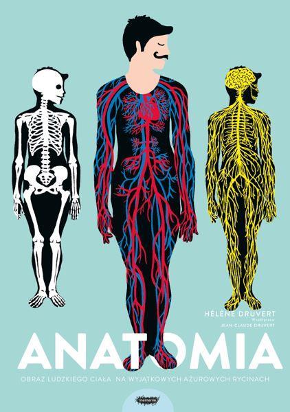 Anatomia-Obraz-ludzkiego-ciala-na-wyjatkowych-azurowych-rycinach