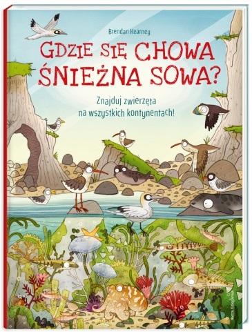gdzie_sie_chowa_sniezna_sowa