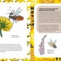 pszczoly-miodne-1